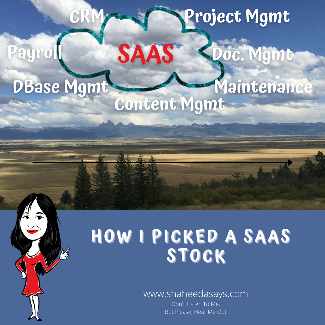 HOW I PICKED A SAAS STOCK